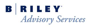 B. Riley Advisory Services logo