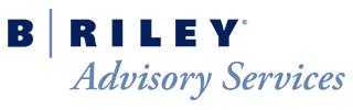 B. Riley Advisory Services